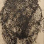 「amaryllis-1」エッチング、アクアチント 20×15cm
